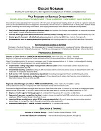 Business Development Executive Professional Resume Sample<br />All material is copyrighted by The Writing Guru.